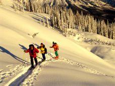 winterwanderung-gesund