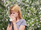 Allergie: Symptome