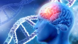 Demenztest: Nur vergesslich oder dement?
