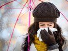 Erkältung oder Heuschnupfen: Sieben Unterschiede