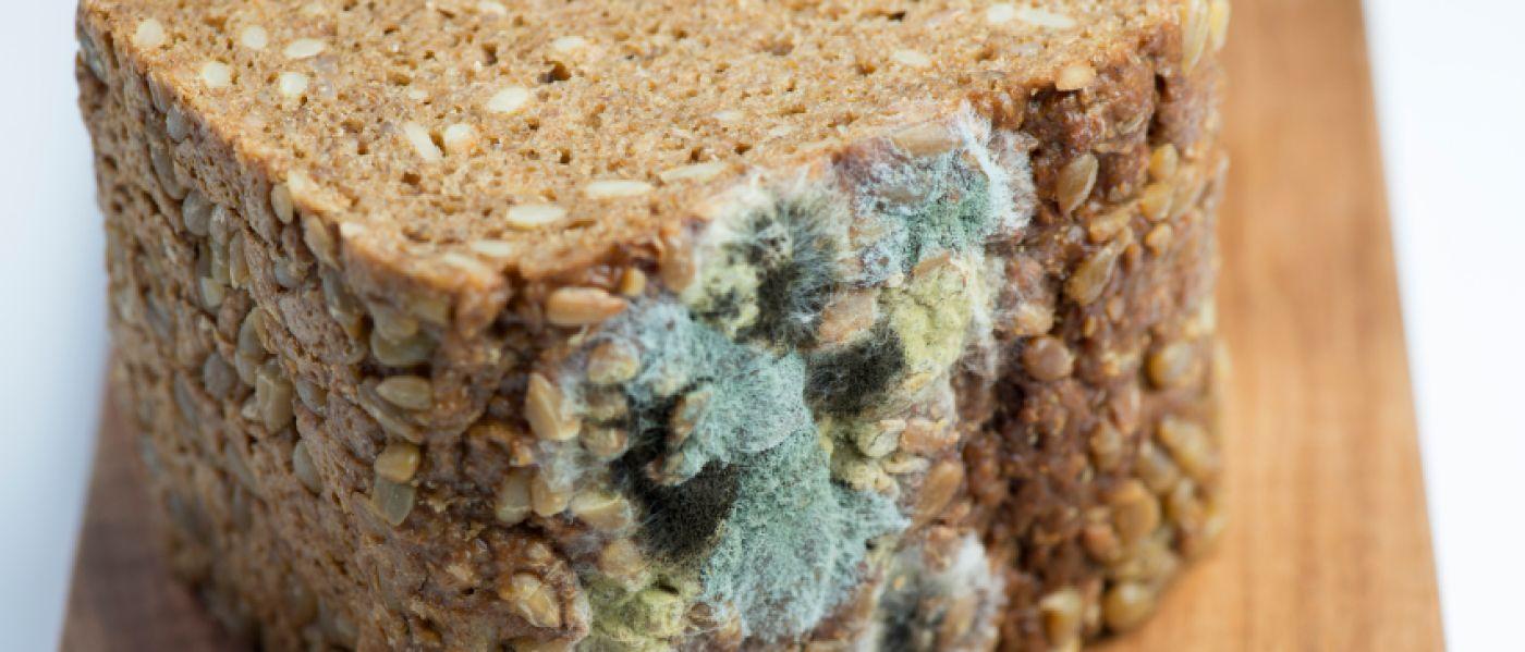 Wie man Brot aus der Diät entfernt