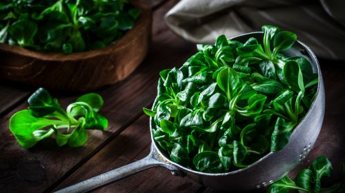 Low-purine or purine-free foods: This diet has hardly any purines