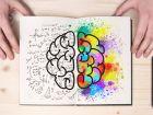 Gehirn: Aufbau und Funktionen