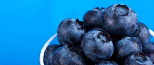 blaubeeren heidelbeeren