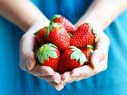 Gesunde Erdbeeren: Wenig Kalorien, viel Geschmack