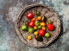 Gesunde Tomaten: So tun sie dem Körper gut