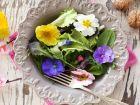 Gesund und lecker: 15 Blüten, die man essen kann