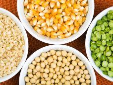 Ernährung-Vegan-essen-will-gut-geplant-sein