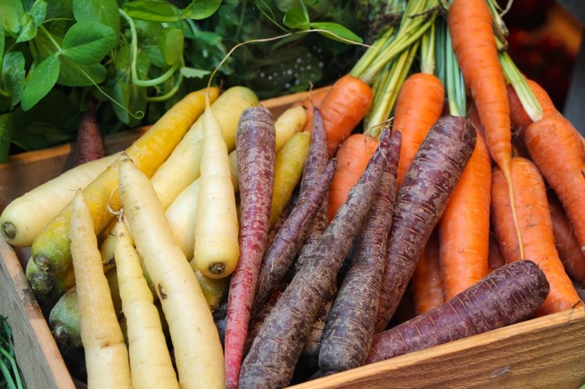 Karotten-Kalorien-und-N-hrstoffe-im-berblick-plus-Suppen-Rezept-mit-Ingwer