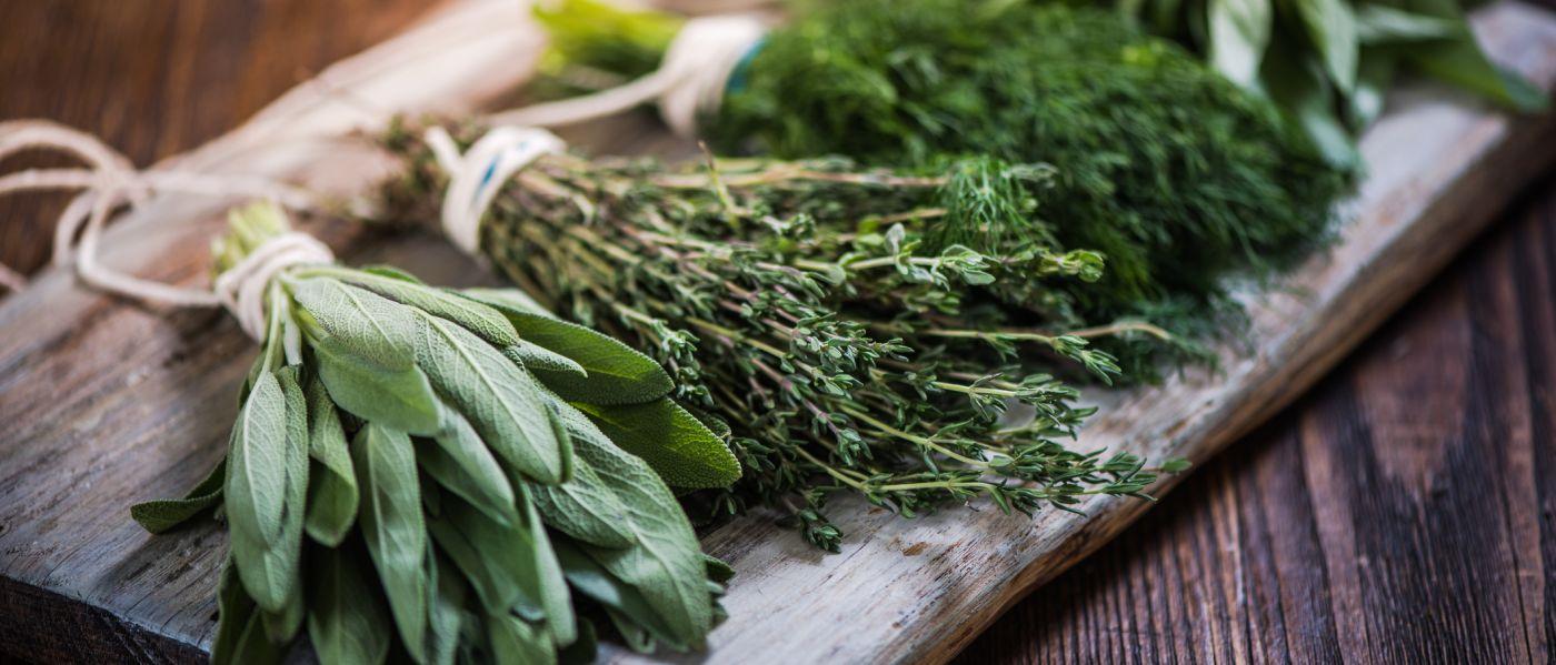 Diäten für hohen Cholesterinspiegel und Harnsäure