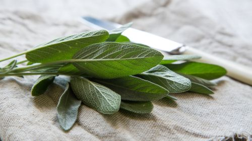 Home remedies for menopausal symptoms
