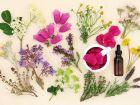 Mit Homöopathie gegen Schnupfen, Husten und Halsschmerzen