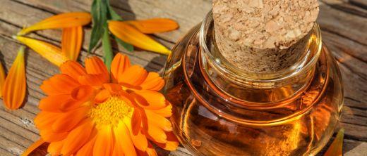 Calendula als homöopathische Urtinktur