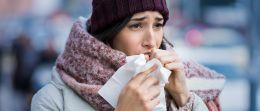 Euphorbium: Heilsam bei Atemwegserkrankungen