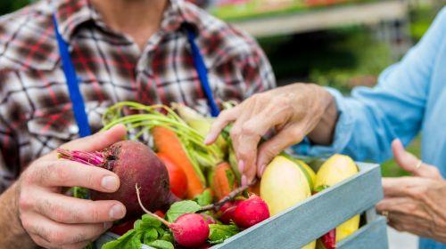 14 alimentos para prevenir la demencia