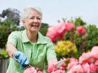 Neue Leitlinien zur Behandlung bei Osteoporose