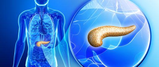 gesunde bauchspeicheldrüse