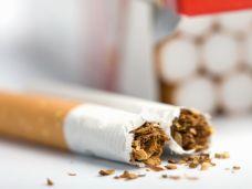 Zerbrochene Zigarette mit verstreutem Tabak