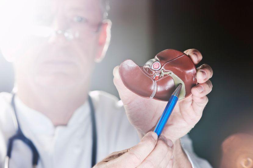 Steine in der Gallenblase Symptome + Diät