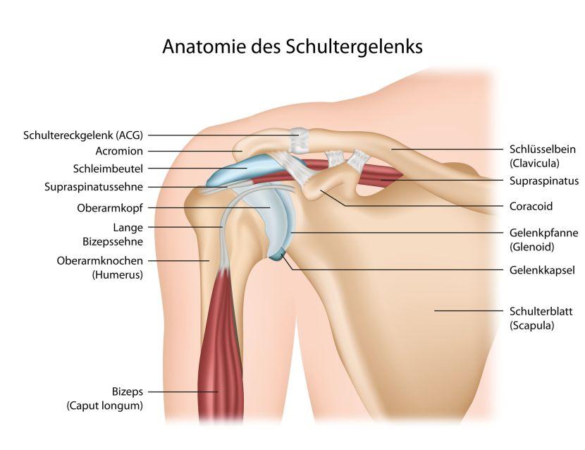 Frozen Shoulder • Was hilft bei Schultersteife?