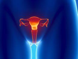 Mythen und Fakten über die Vagina