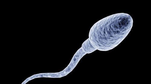 dunkles blut im sperma