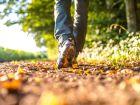 UG| Diabetes lässt sich mit Ausdauersport lindern