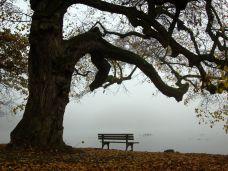 Abschiednehmen braucht Zeit und keine Behandlung
