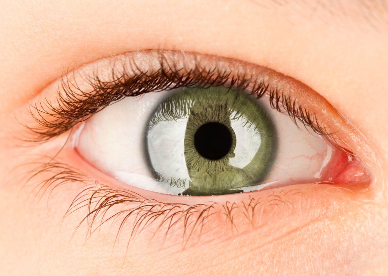 Das Auge • Spiegel für Krankheiten