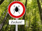 UG| Zecken-Krankheit: Drei neue FSME-Risikogebiete in Deutschland